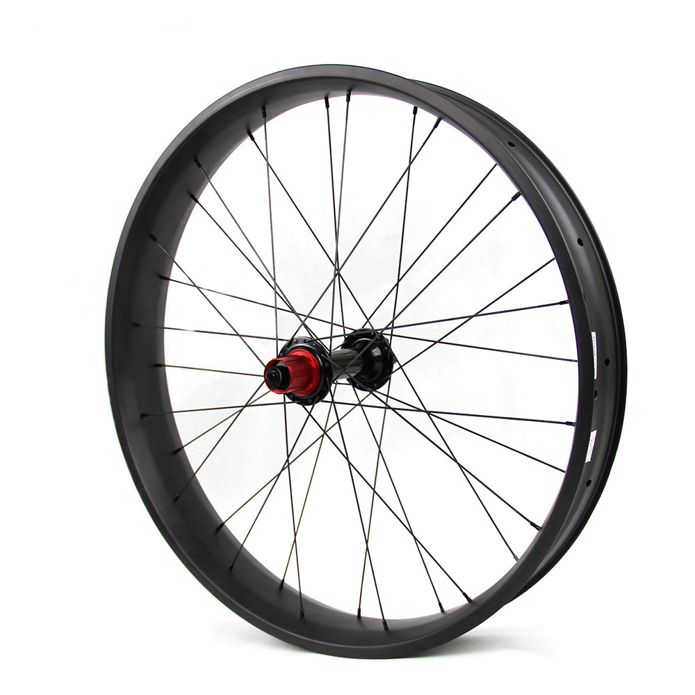 carbob fatbike wheelset customzied painting